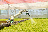 smart robotic in agriculture futuristic concept, robot farmers (automation) must be programmed to work to spray chemical,fertilizer or increase efficiency, growing a seed, harvesting, reduce time