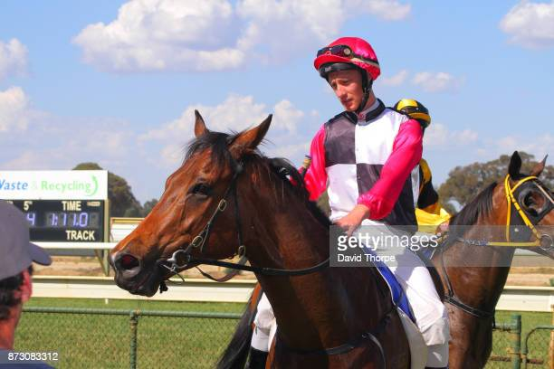 Smash the Gong ridden by Jack Hill returns to the mounting yard after winning the Specsavers Benalla BM58 Handicap on November 12 2017 in Benalla...