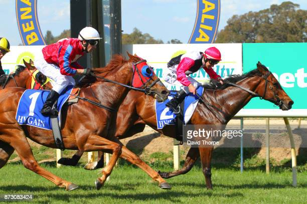 Smash the Gong ridden by Jack Hill wins the Specsavers Benalla BM58 Handicap on November 12 2017 in Benalla Australia