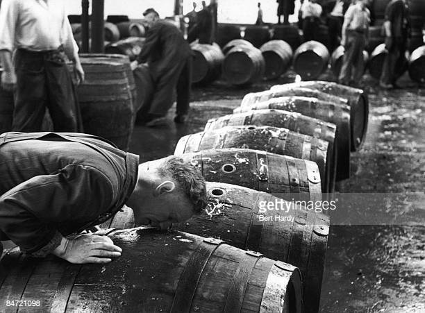 A 'smeller' sniffs scalded casks to check their cleanliness at the Guinness brewery at St James's Gate Dublin 22nd August 1953 Original publication...