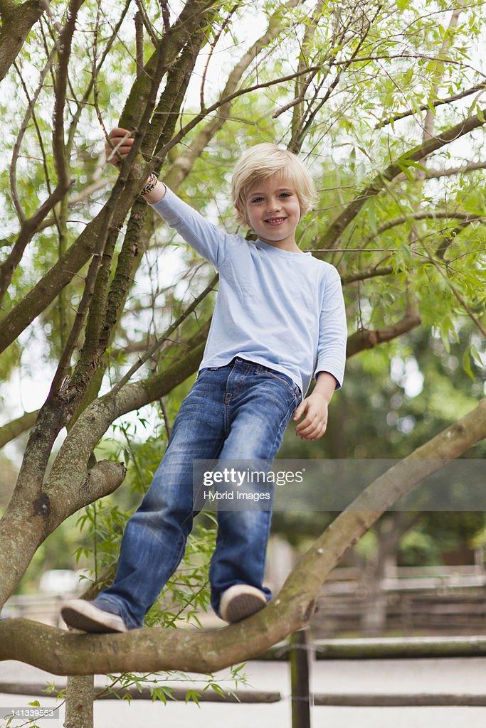 Smiling boy climbing tree : Stock Photo