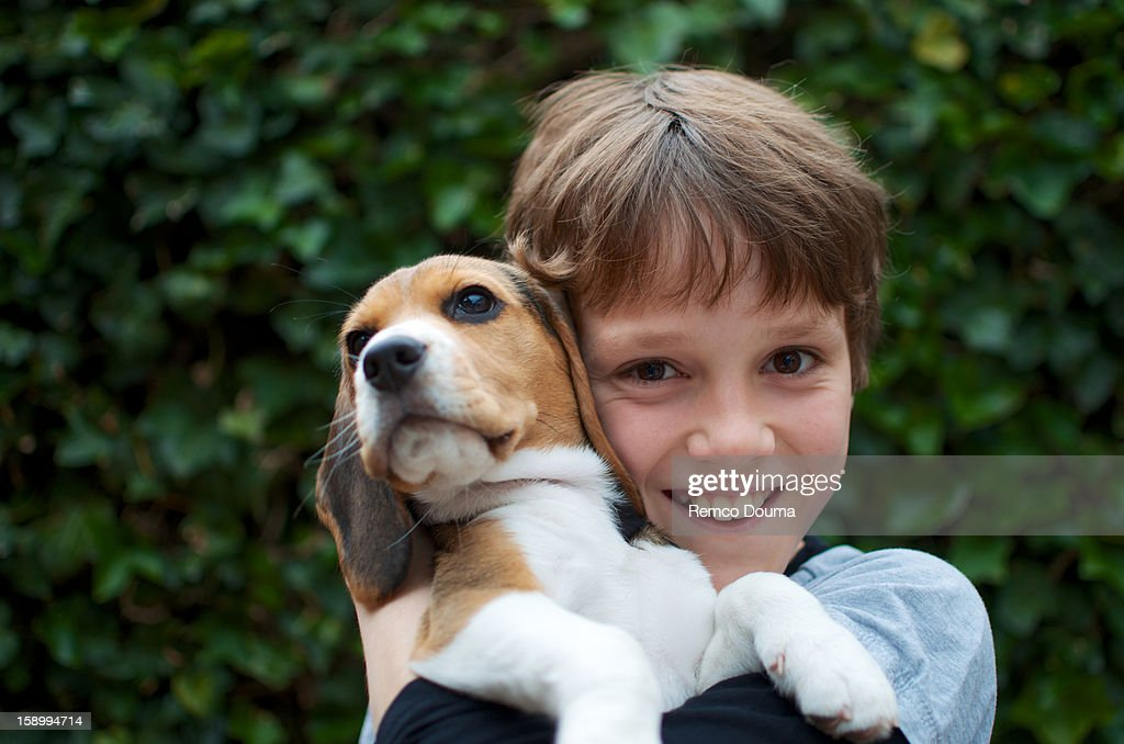 Smiling boy holding a Beagle : Stock Photo