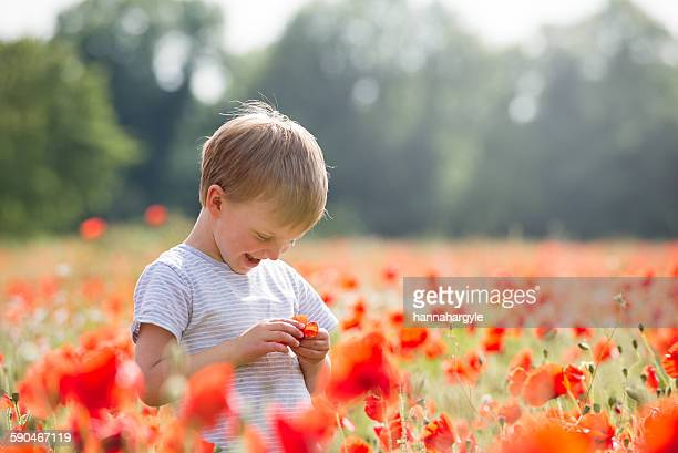 Smiling Boy standing in a poppy field