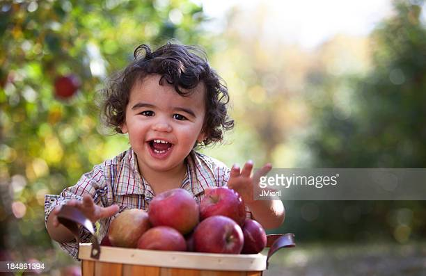 Smiling Boy With Basket of Freshly Picked Minnesota Apples.