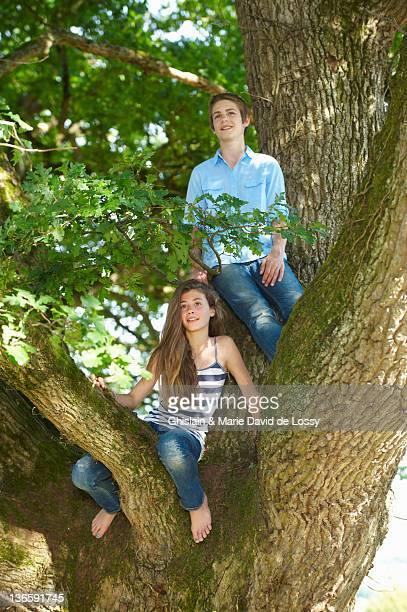 Sonriendo par sentado en el árbol