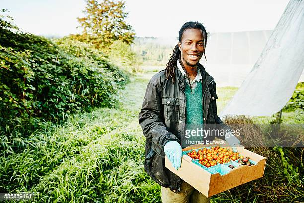 Smiling farmer holding box of organic tomatoes