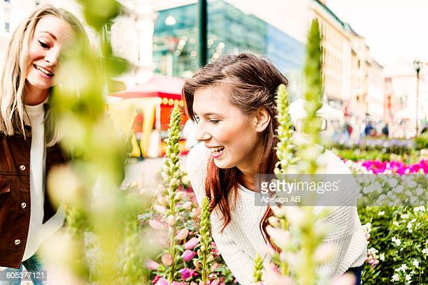 Smiling female friends looking at plants in market