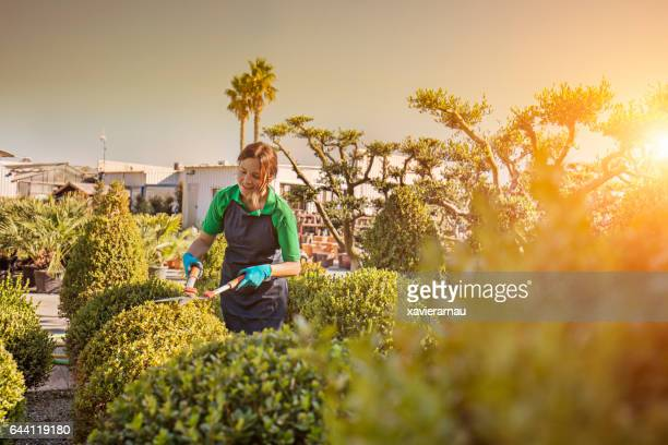 Smiling female worker pruning plants on farm