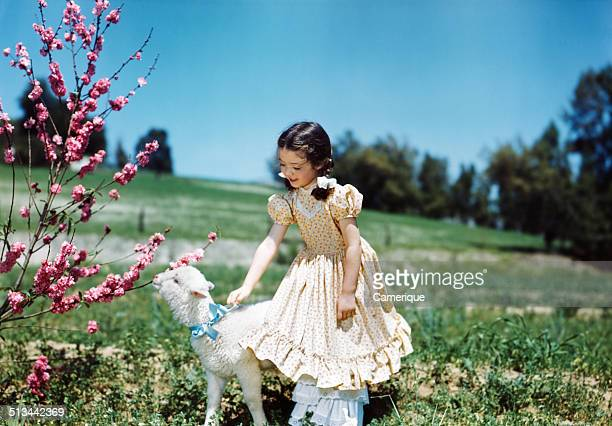 Smiling girl wearing ruffled dress petting lamb by tree springtime easter Los Angeles California 1949