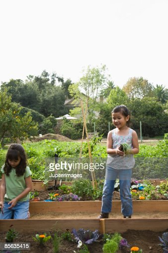 garden view girls Vegetable food gardens stock images, from wide views to closeups, with flowers, paths, raised beds, climbing vines, patios, backyards, container gardens & harvests.