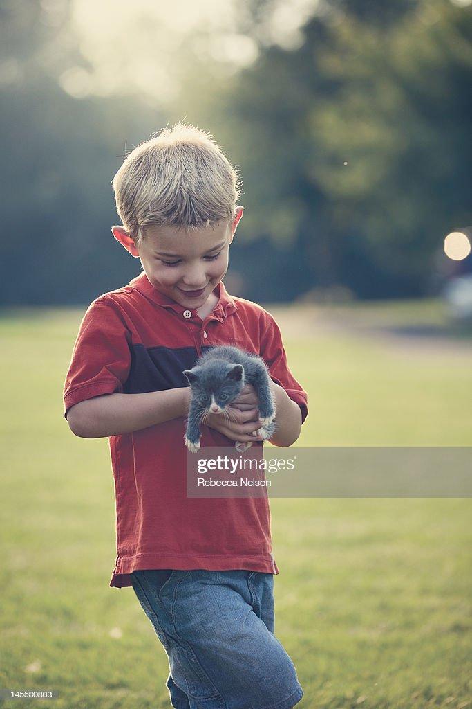 Smiling little boy holding gray kitten : Stock Photo