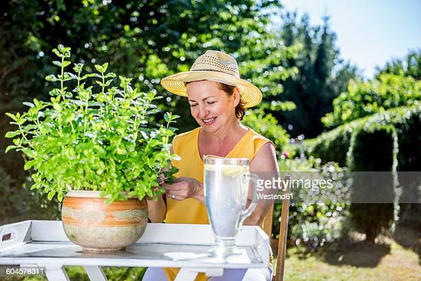 Smiling mature woman caring for potted herbaceous plant in garden