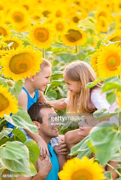Sorridente pais nos ombros as crianças entre sunflowers.