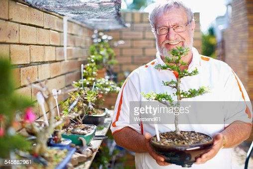 Smiling senior man holding bonsai tree