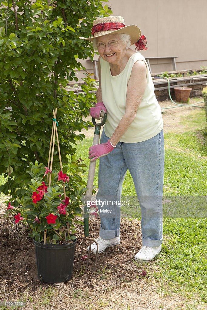 Smiling senior woman in a sun hat gardening. : Stock Photo