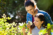 Smiling woman with daughter smelling white roses in backyard during sunny day