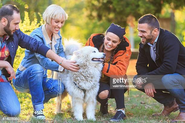 Smiling young people caressing a samoyed dog