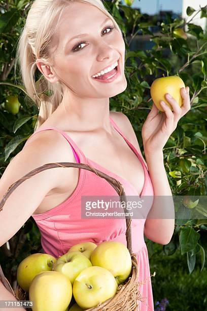 Souriante jeune femme cueillir des pommes