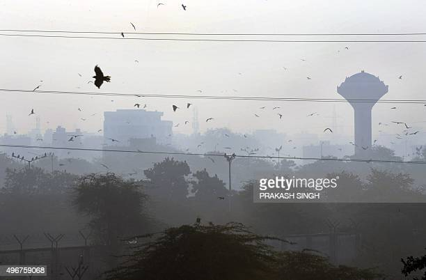 Smog envelops New Delhi on the morning after the Diwali festival which is notorious for heralding smoky air as thousands of firecrackers are set off...