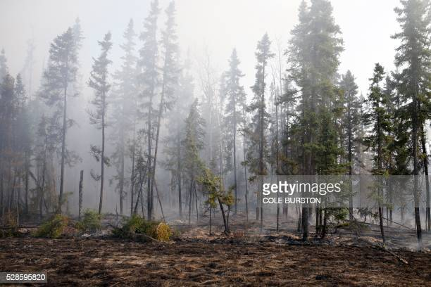 Smoke and flames can be seen along the highway near Fort McMurray Alberta on May 6 2016 Canadian police led convoys of cars through the burning ghost...