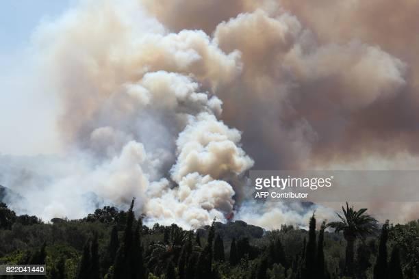 Smoke billows during a forest fire in La CroixValmer near SaintTropez on July 25 2017 as firefighters keep on battling blazes across southern France...