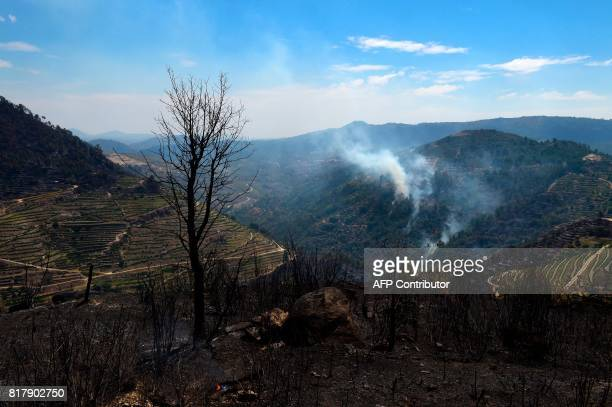 Smoke rises near burnt land following a wildfire in Alijo on July 18 2017 A month after the deadliest forest fire in Portugal's recent history nearly...