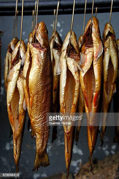 Smoked trout hanging from hooks in a smokehouse, Fuschl, Austria, Europe