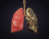 Smokers and Healthy Lung Illustration. 3D render