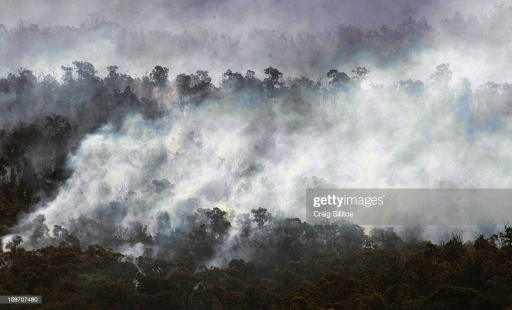 Smokes rises from tree tops near the town of Seaton on January 19, 2013 in Australia. Bushfires in Victoria have claimed one life and destroyed several houses as record heat continues to create extreme fire conditions throughout Australia.