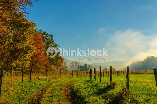 Smoky Mountains Autumn Fog and sun : Foto de stock