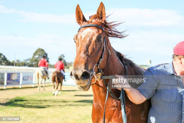 Smooth Hustler after winning the Tambo Waste 3YO Maiden Plate at Bairnsdale Racecourse on July 25 2017 in Bairnsdale Australia