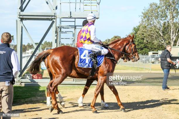 Smooth Hustler ridden by Chris Symons returns after winning the Tambo Waste 3YO Maiden Plate at Bairnsdale Racecourse on July 25 2017 in Bairnsdale...