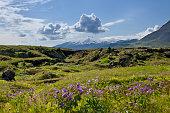 Snaefellsjoekull volcano, Buoir or Faskruosfjoerour, Snaefellsnes, Snaefellsness, Iceland, Europe