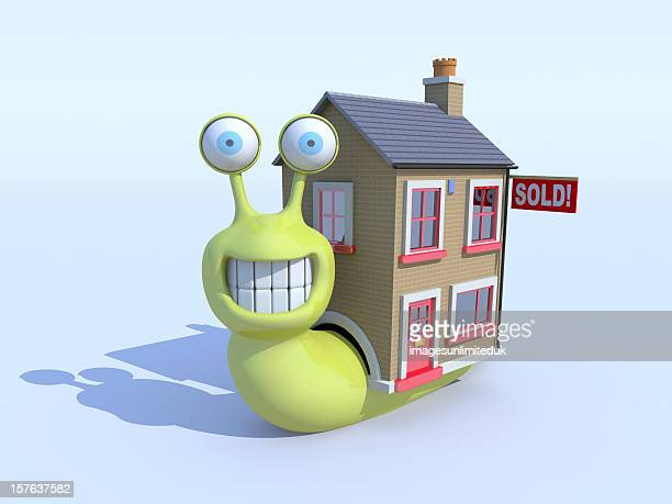 Snail buys a new house