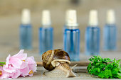 Snail climb the glass bottle of blue surrounded by flowers and greenery