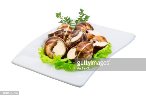 Escargot : Stock Photo