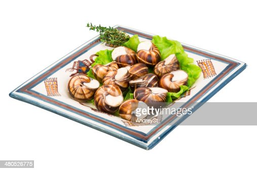 Cassolette d'escargots : Photo