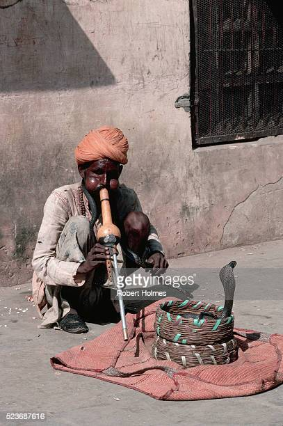 A Snake Charmer and Snakes