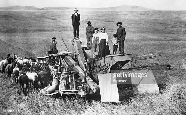 1890'sNE Horse reaper on wheatfields Farmer's family proudly models on top of the formidable machine