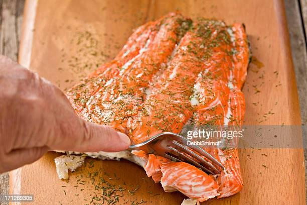 Sneaking A Bite Of Salmon