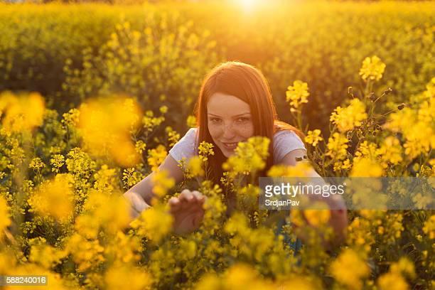 Sneaking through yellow flowers