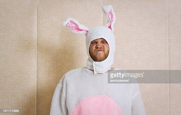 sneering bunny