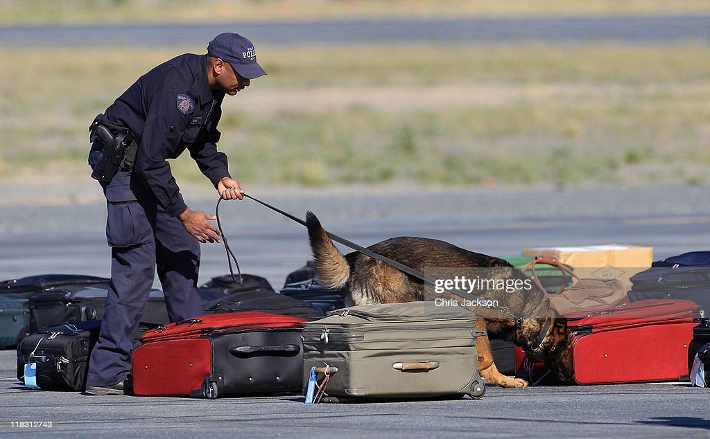 A sniffer dog checks luggage before it is loaded onto the Royal Plane at Yellowknife Airport on July 6, 2011 in Yellowknife, Canada. The newly married Royal Couple are on the seventh day of their first joint overseas tour. The 12 day visit to North America is taking in some of the more remote areas of the country such as Prince Edward Island, Yellowknife and Calgary. The Royal couple started off their tour by joining millions of Canadians in taking part in Canada Day celebrations which mark Canada's 144th Birthday.