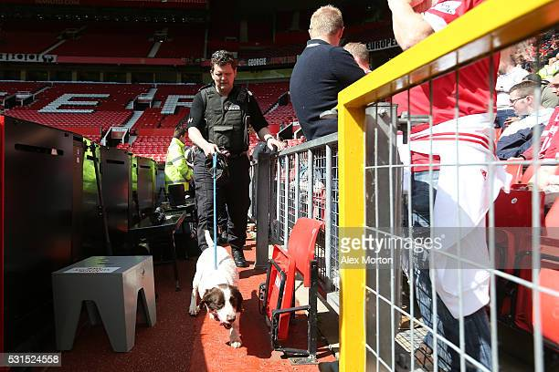 A sniffer dog patrols after fans were evacuated from the ground prior to the Barclays Premier League match between Manchester United and AFC...