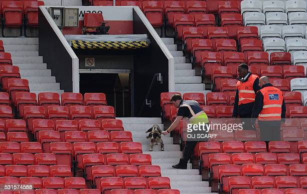 A sniffer dog searches the stands after fans evacuated Old Trafford stadium in Manchester north west England on May 15 after the English Premier...