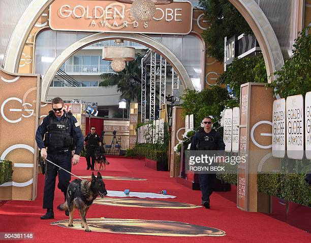 A sniffer dog with a US Coast Guard K9 unit checks the arrivals after before the start of the 73nd annual Golden Globe Awards January 10 in Beverly...