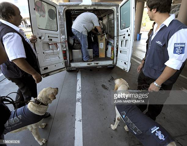 Sniffer dogs of the Argentine customs trained to search for hidden drugs and US dollars wait next to a van at Buenos Aires' harbour on December 19...