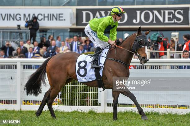 Snitty Kitty ridden by Beau Mertens heads to the barrier before the Harrolds Caulfield Sprint at Caulfield Racecourse on October 21 2017 in Caulfield...