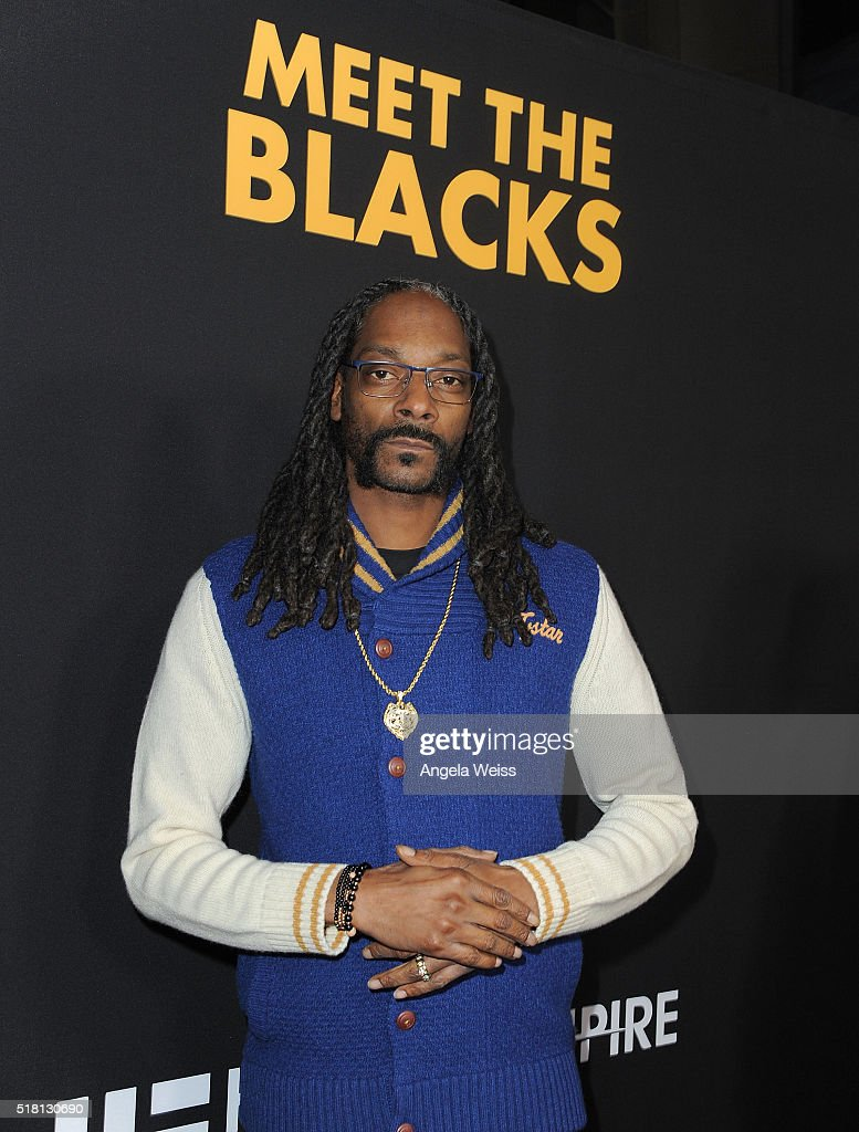 "Premiere Of Freestyle Releasing's ""Meet The Blacks"" - Red Carpet"