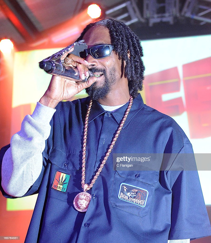 Snoop Lion (aka. Snoop Dogg) performs during Day 3 of the SXSW Music Festival at Viceland on March 14, 2013 in Austin, Texas.